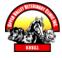 upper valley vet logo